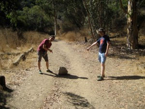 There's a rock in the middle of the path. You're on the right trail!
